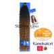 Impression Bulk Bohemian crochet braids (color TT27)