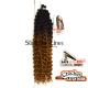 Kima Brazilian Twist Crochet braids extensions (color TT1B/27)